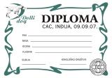 diplomadollidog